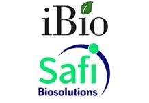 iBio Enters into Agreement with Safi Biosolutions to Develop Growth Factors and Cytokines Using the FastPharming System