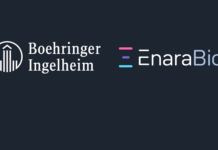 Enara and Boehringer Ingelheim sign oncology partnership