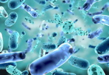 How Pre and Probiotics Will Protect You from Infections Like Covid19