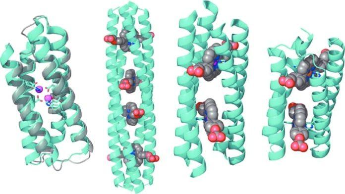 Computational Protein Design Platform