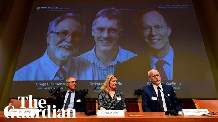 2019 Nobel Prize winners in physiology or medicine announced