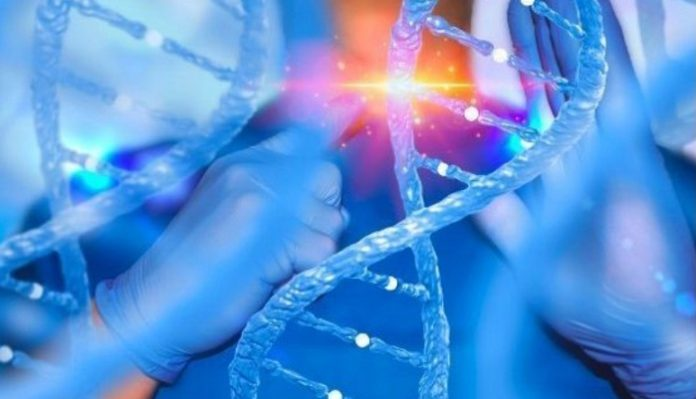 CytoviaTherapeutics and the University of California enter into a partnership to develop precision gene-edited CAR-NK celltherapy