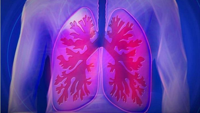 Research of new treatments for chronic lung diseases