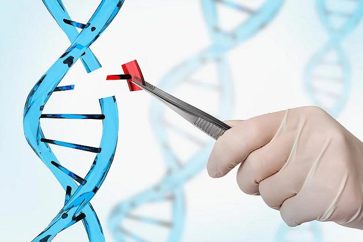 The Regenerative Medicine Supply Chain